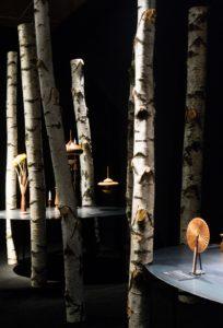 Natural Talent exhibition set design2